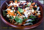 cranberry, Apple & Parm Salad